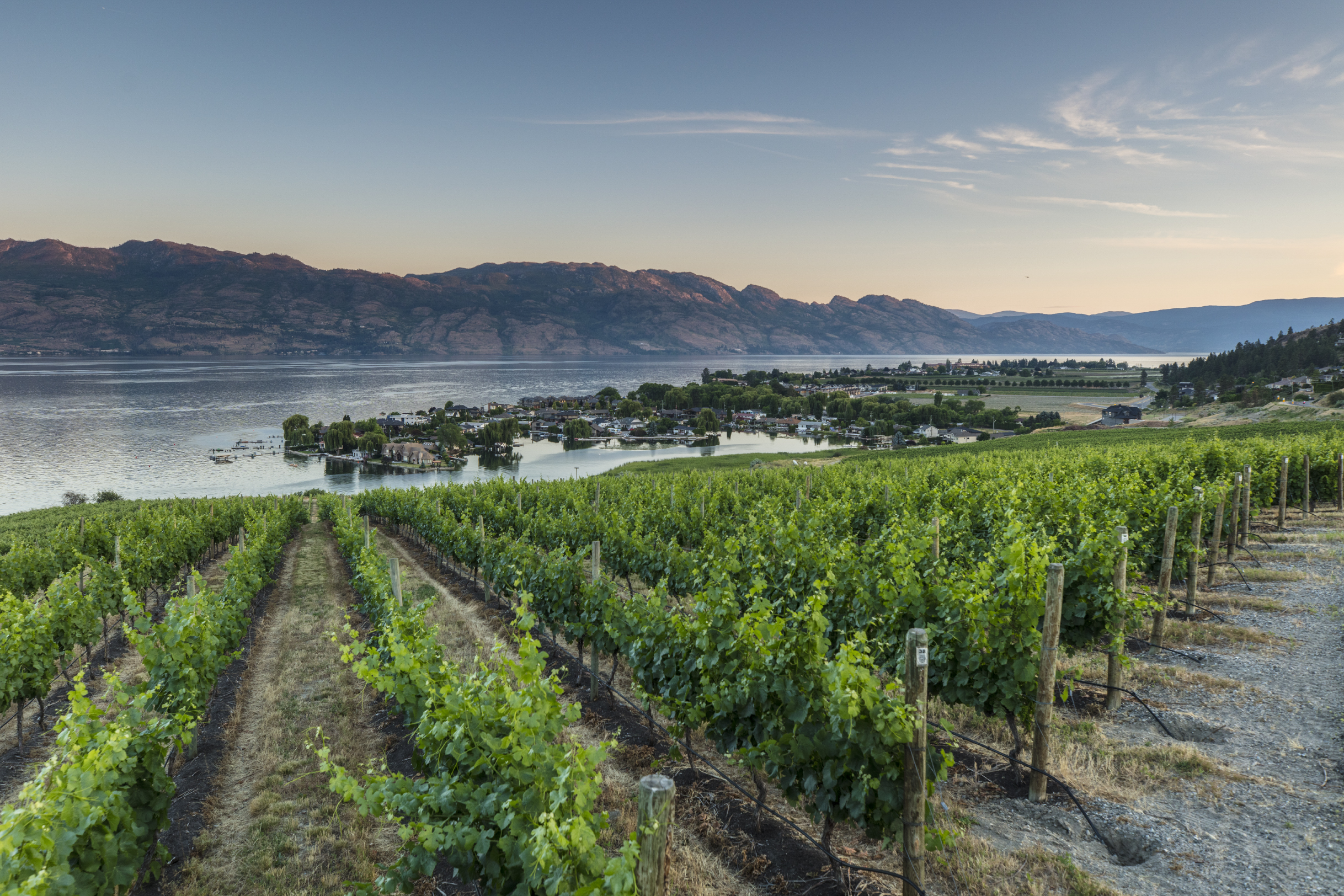 West Kelowna - Wineries
