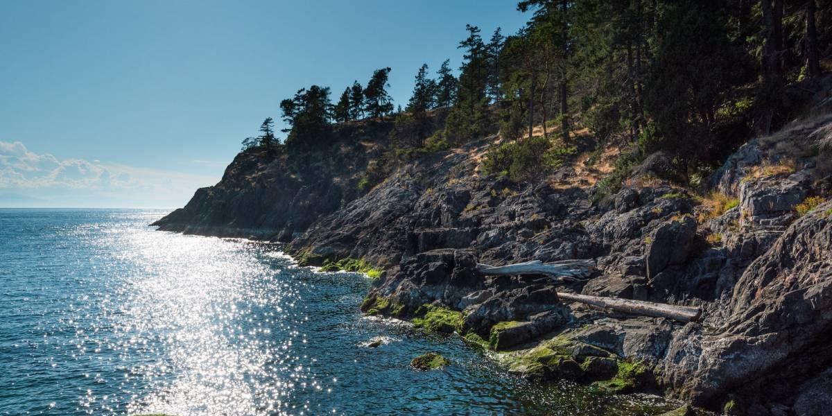 Bowen Island shoreline